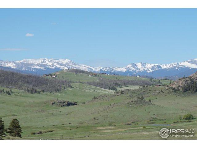 Address Not Published, Livermore, CO 80536 (MLS #851418) :: Kittle Real Estate