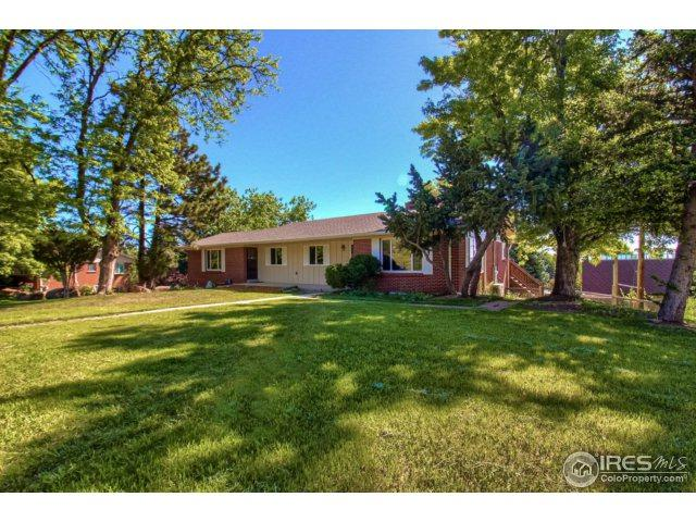 2086 Elderberry Rd, Golden, CO 80401 (MLS #851459) :: The Daniels Group at Remax Alliance