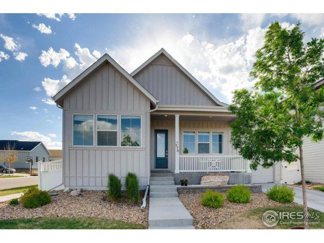 279 S 45th Ave, Brighton, CO 80601 (MLS #852508) :: The Daniels Group at Remax Alliance