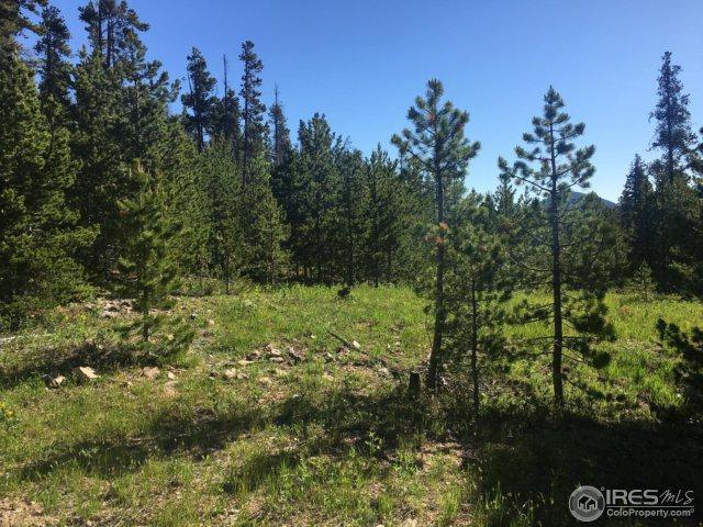 Mount Hellene Dr, Red Feather Lakes, CO 80545 (MLS #852973) :: Kittle Real Estate
