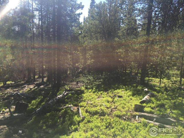 Mount Hellene Dr, Red Feather Lakes, CO 80545 (MLS #852975) :: Kittle Real Estate