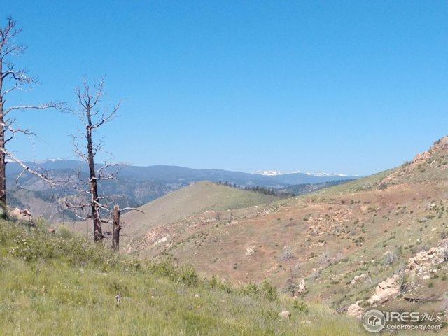 409 Horse Mountain Dr, Livermore, CO 80536 (MLS #853265) :: Kittle Real Estate