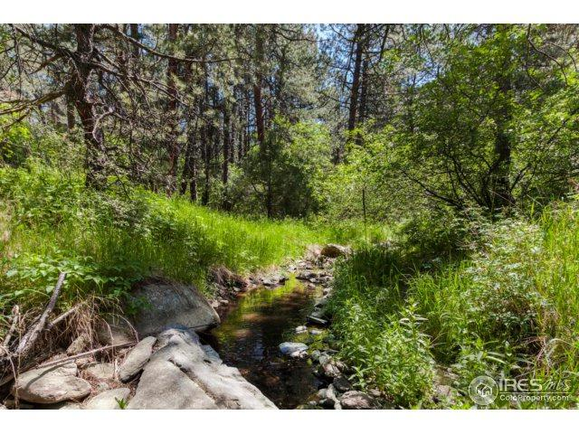 1157 Spruce Mountain Dr, Drake, CO 80515 (#853713) :: The Griffith Home Team