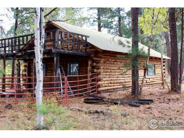 Roubideau Trail, Montrose, CO 81402 (#853717) :: Re/Max Structure