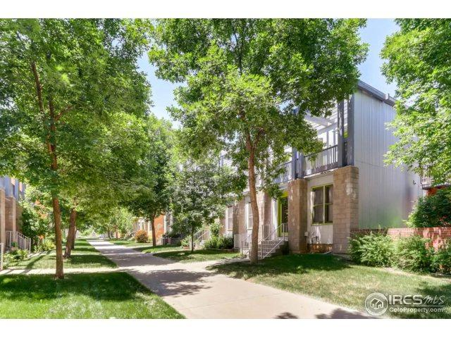 807 Tempted Ways Dr, Longmont, CO 80504 (MLS #854030) :: The Daniels Group at Remax Alliance