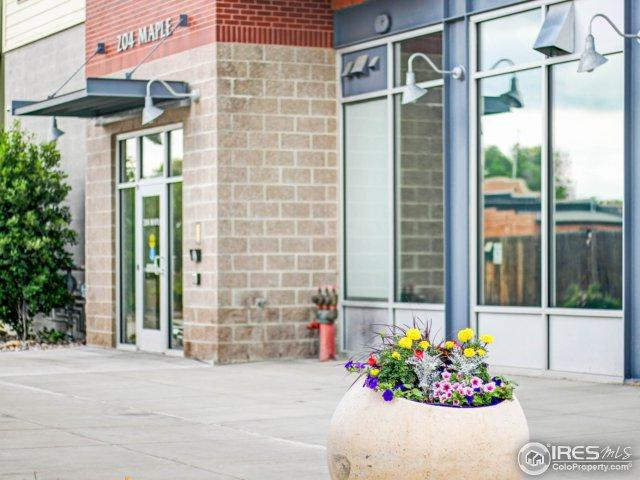 204 Maple St #204, Fort Collins, CO 80521 (MLS #854092) :: The Daniels Group at Remax Alliance