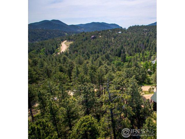 219 Pine Rd, Golden, CO 80403 (#854303) :: The Peak Properties Group