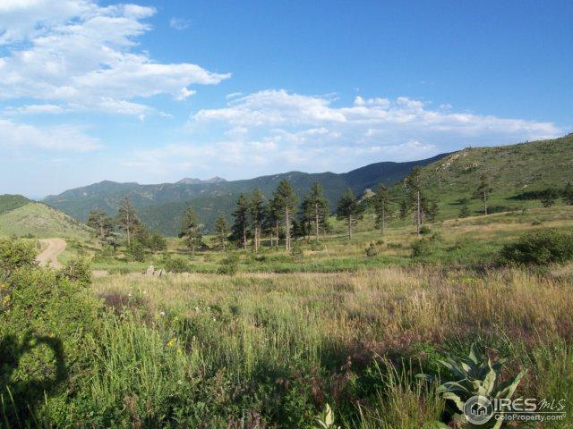 730 Lost Angel Rd, Boulder, CO 80302 (MLS #854646) :: 8z Real Estate