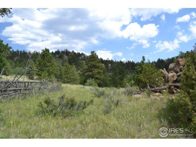 0 North Rim Rd, Livermore, CO 80536 (MLS #855449) :: Kittle Real Estate