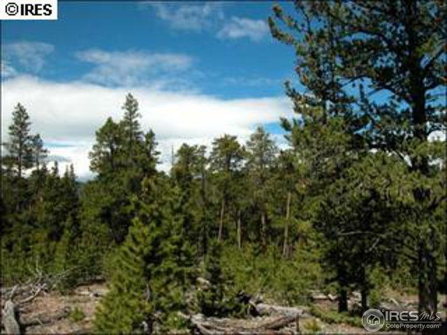 Forest Service Road 195, Red Feather Lakes, CO 80545 (MLS #855466) :: 8z Real Estate