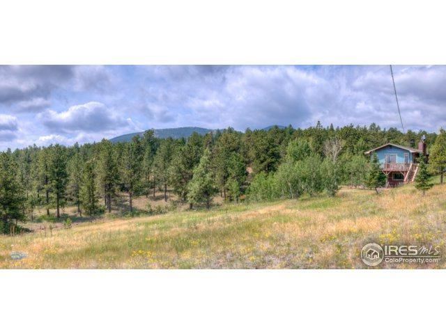 336 Taylor Rd, Lyons, CO 80540 (#855486) :: The Peak Properties Group