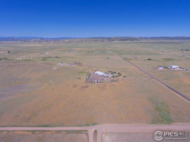 439 Rodeo Hills Ln, Wellington, CO 80549 (MLS #855663) :: The Daniels Group at Remax Alliance