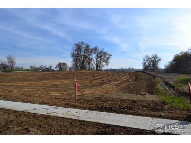 1587 Spring Creek Crossing, Lafayette, CO 80026 (MLS #856221) :: 8z Real Estate