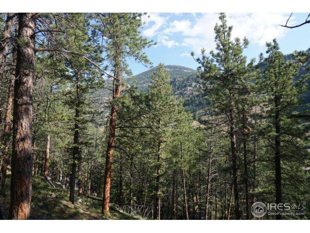 1481 David Dr, Estes Park, CO 80517 (MLS #856289) :: The Lamperes Team
