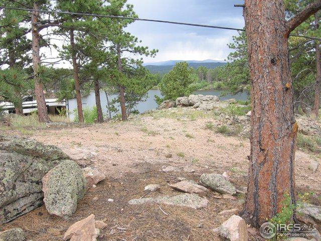 0 Weda Ct, Red Feather Lakes, CO 80545 (MLS #856477) :: Kittle Real Estate