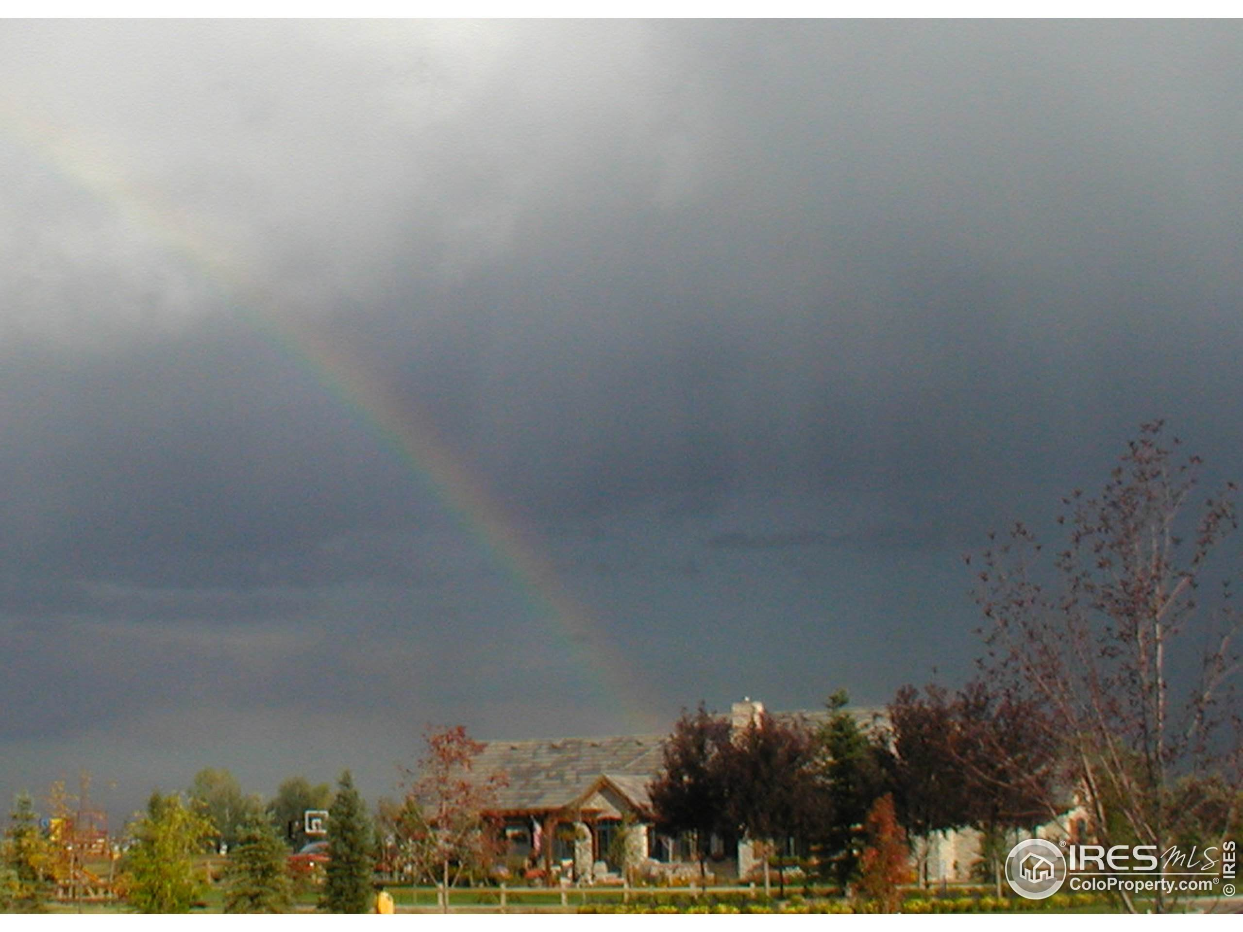 1441 Prairie Hawk Rd, Eaton, CO 80615 (#856631) :: My Home Team