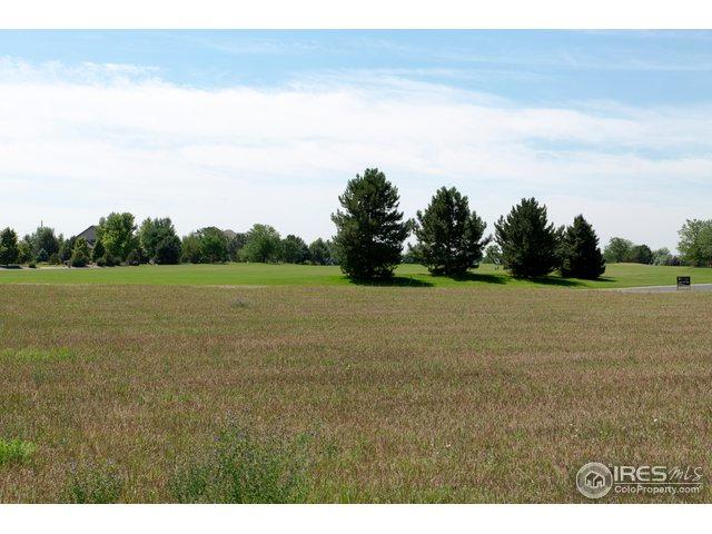 8244 Coeur Dalene Dr, Fort Collins, CO 80525 (MLS #856814) :: The Daniels Group at Remax Alliance
