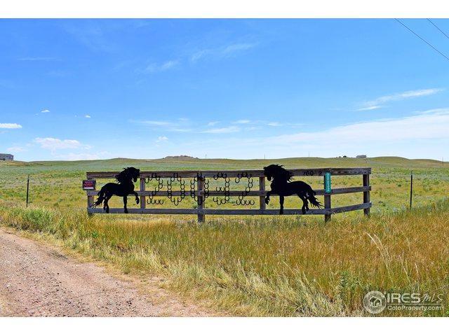 20032 Cattle Dr, Wellington, CO 80549 (MLS #857025) :: Kittle Real Estate