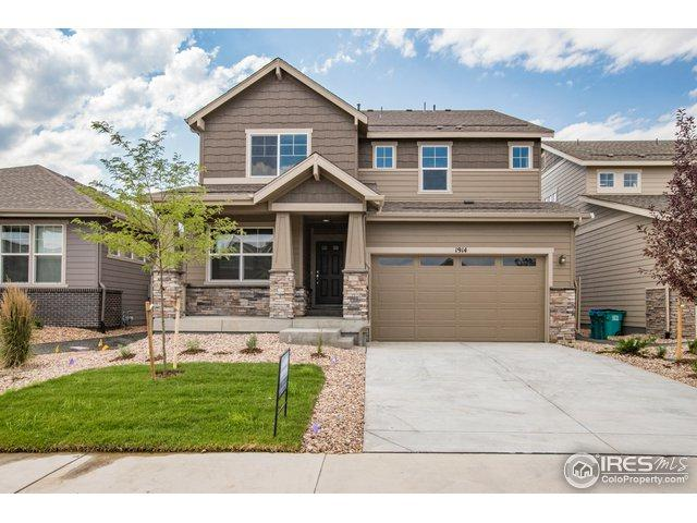 1914 Los Cabos Dr, Windsor, CO 80550 (MLS #857116) :: The Daniels Group at Remax Alliance