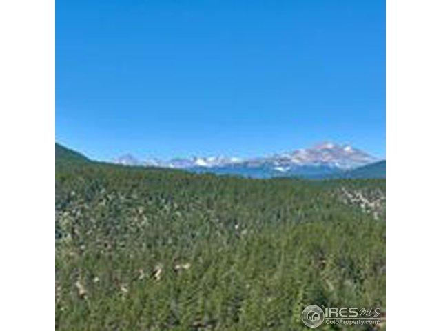 Spruce (Parcel B) Dr, Lyons, CO 80540 (MLS #857402) :: 8z Real Estate