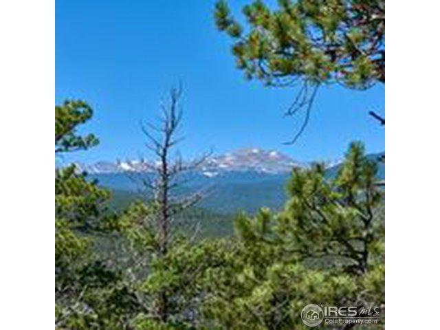 Spruce (Parcel A) Dr, Lyons, CO 80540 (MLS #857405) :: 8z Real Estate