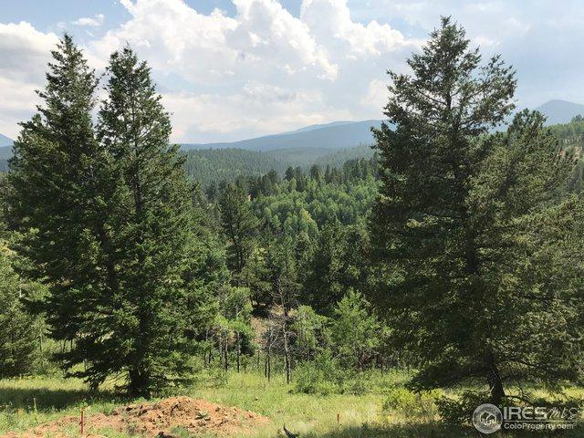 342 County Rd 99, Pinecliffe, CO 80471 (MLS #857772) :: 8z Real Estate