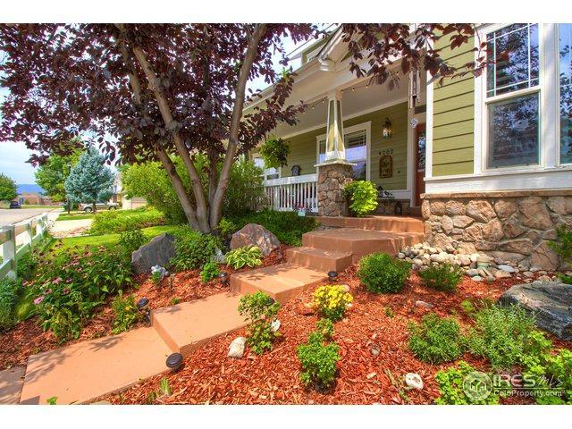 4202 Da Vinci Dr, Longmont, CO 80503 (MLS #858363) :: Downtown Real Estate Partners