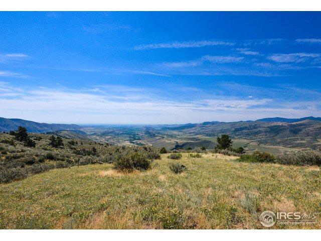 4525 Woodchuck Dr, Masonville, CO 80541 (MLS #858513) :: Kittle Real Estate