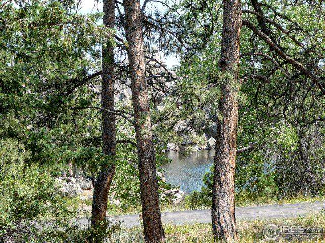 111 Elk Trl, Red Feather Lakes, CO 80545 (MLS #858783) :: Kittle Real Estate
