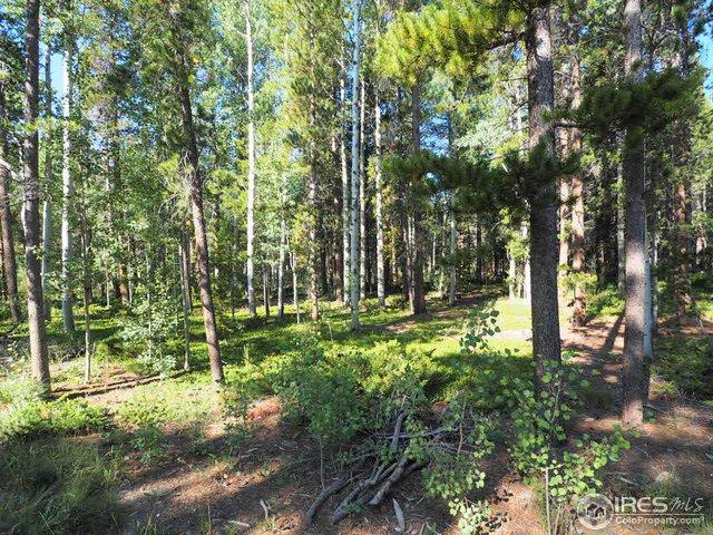 0 Severance Lodge Rd, Black Hawk, CO 80422 (MLS #858803) :: 8z Real Estate