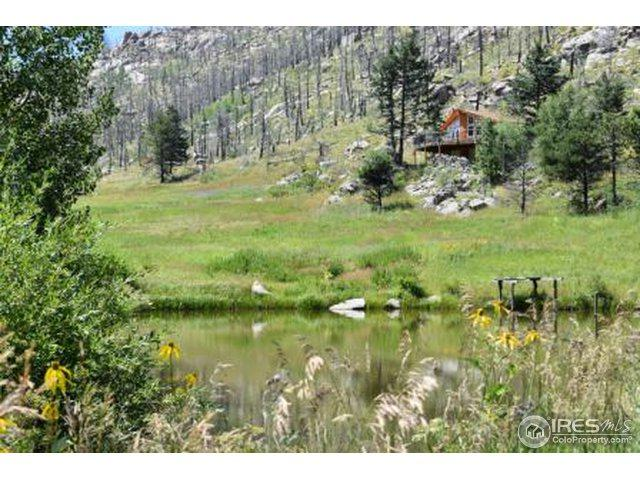 2894 Paradise Park Rd, Bellvue, CO 80512 (MLS #858938) :: Downtown Real Estate Partners
