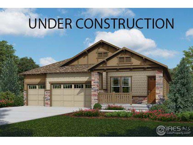 2101 Summerlin Ln, Longmont, CO 80503 (MLS #859428) :: The Daniels Group at Remax Alliance