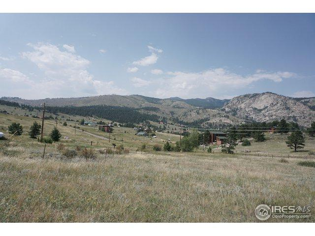 0 Snow Top Dr, Drake, CO 80515 (MLS #859560) :: The Daniels Group at Remax Alliance