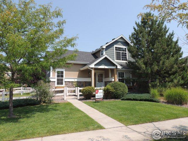 250 Rock Bridge Ln, Windsor, CO 80550 (MLS #859692) :: The Daniels Group at Remax Alliance