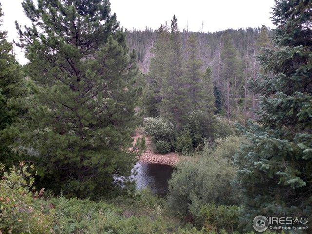 7844 Ottawa Way, Red Feather Lakes, CO 80545 (MLS #859736) :: Kittle Real Estate
