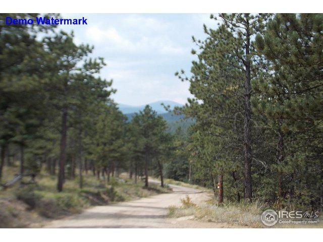 0 Spruce Dr, Lyons, CO 80540 (MLS #859737) :: The Daniels Group at Remax Alliance
