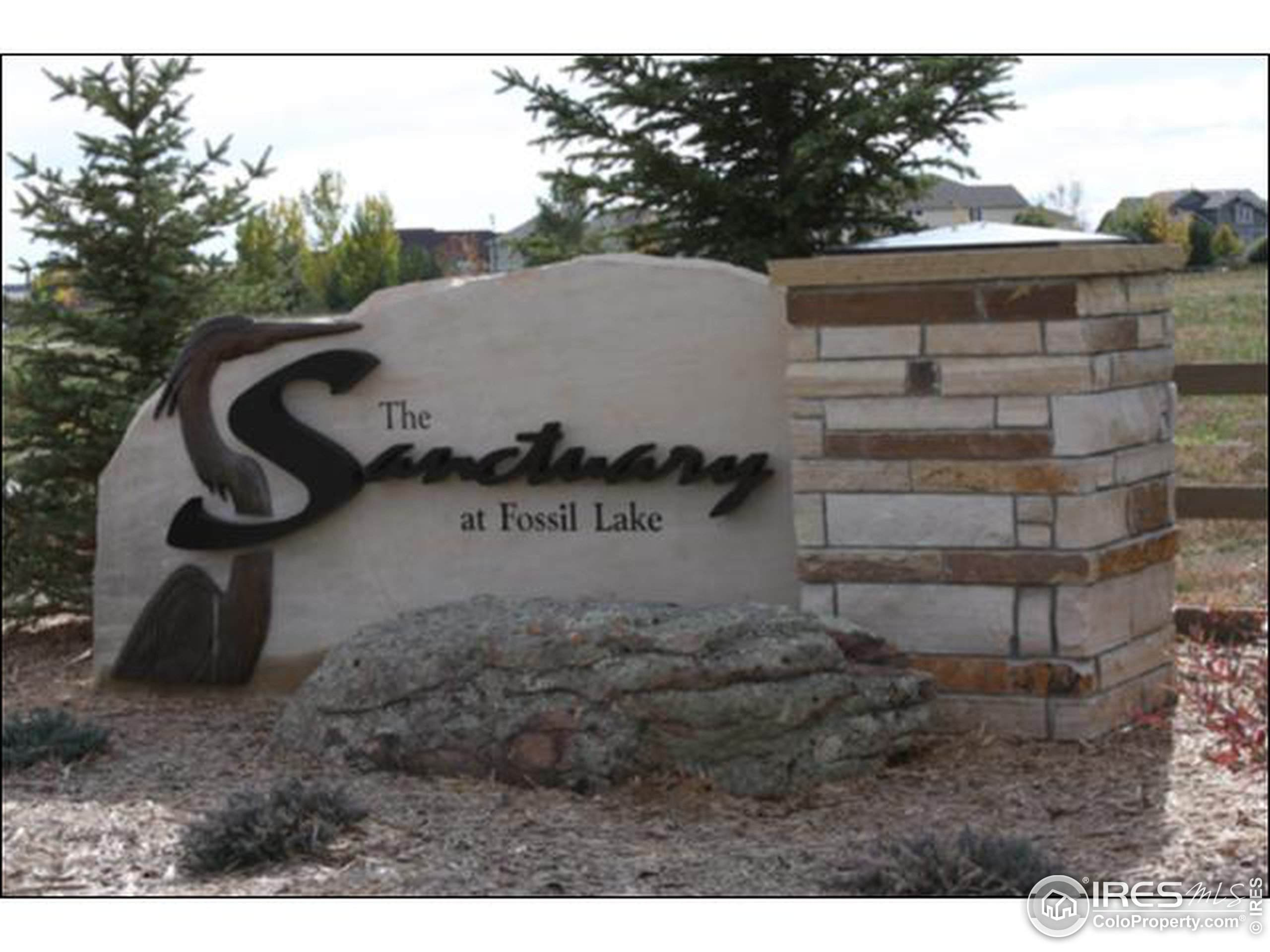 1910 Los Cabos Dr, Windsor, CO 80550 (MLS #859739) :: Tracy's Team