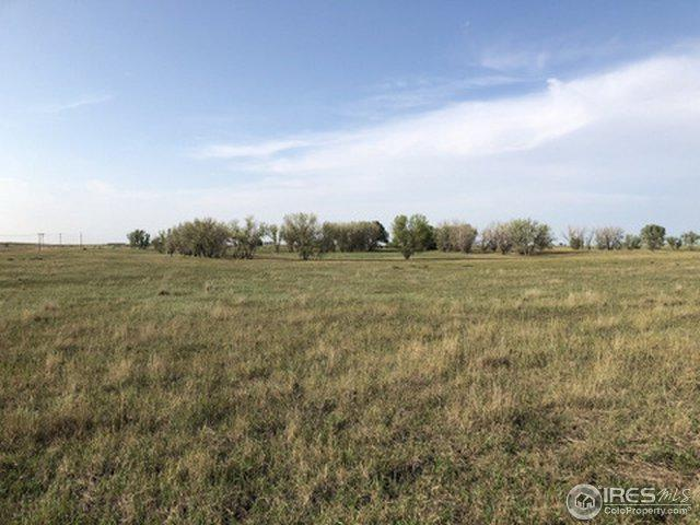 Address Not Published, Keenesburg, CO 80643 (MLS #859770) :: The Daniels Group at Remax Alliance