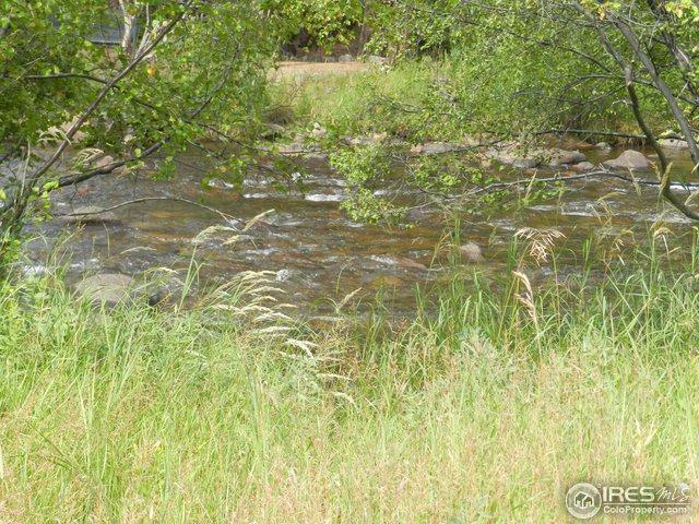 11 Riverside Dr, Estes Park, CO 80517 (#860125) :: The Griffith Home Team