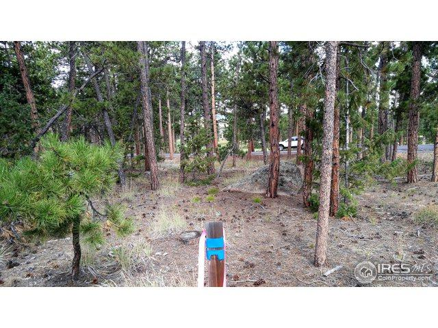 2130 Fox Acres Dr, Red Feather Lakes, CO 80545 (MLS #860404) :: Tracy's Team