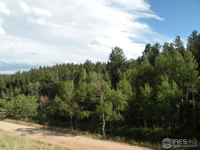 421 Beartrap Rd, Red Feather Lakes, CO 80545 (#860959) :: The Griffith Home Team