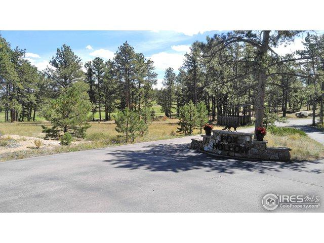 0 Fox Acres Drive, Red Feather Lakes, CO 80545 (MLS #860994) :: Tracy's Team