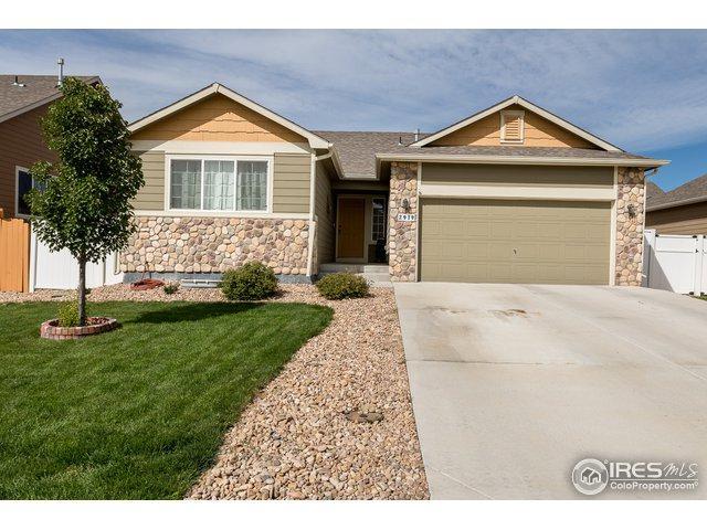 2919 Avocado Ave, Greeley, CO 80631 (#861043) :: The Peak Properties Group