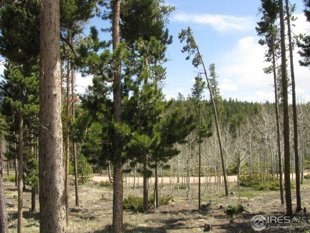 74 Tutelo Dr, Red Feather Lakes, CO 80545 (MLS #861114) :: 8z Real Estate