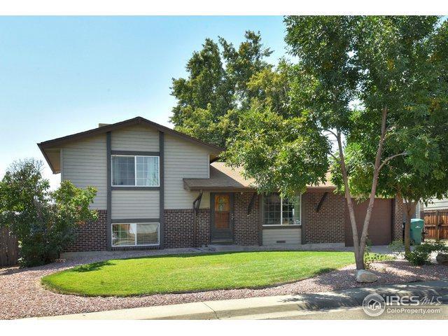 1300 Solana Dr, Denver, CO 80229 (MLS #861456) :: 8z Real Estate