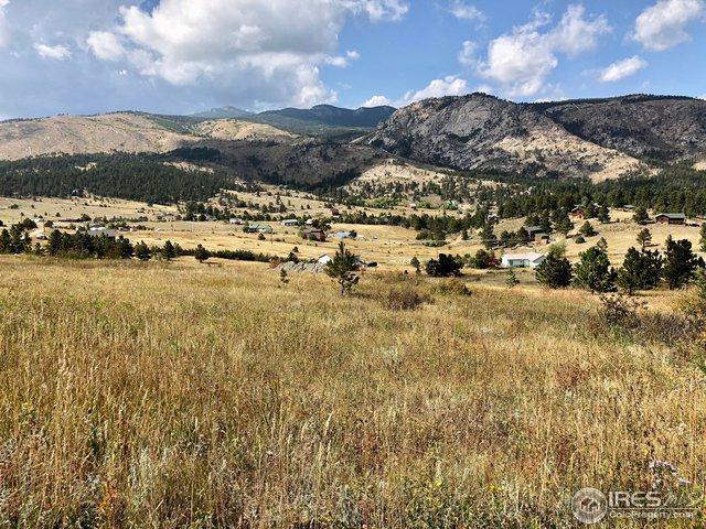 1678 Palisade Mountain Dr, Drake, CO 80515 (MLS #861603) :: 8z Real Estate