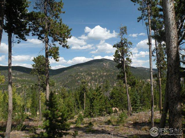 1554 Shoshoni Dr, Red Feather Lakes, CO 80545 (#861605) :: The Griffith Home Team