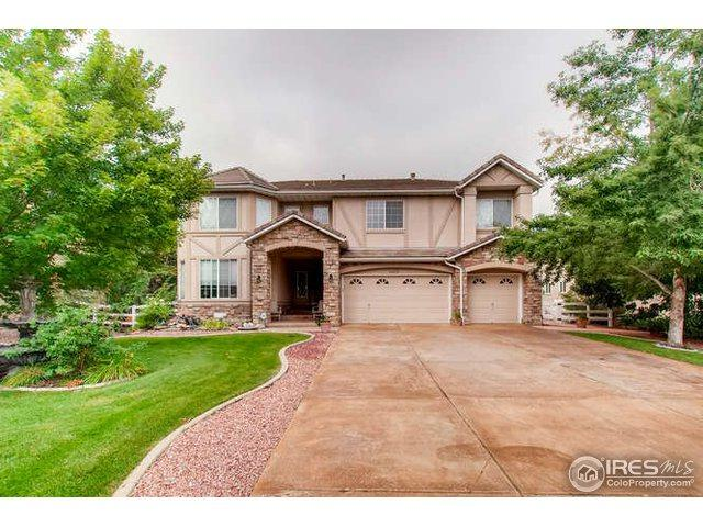 11835 Tennyson Way, Westminster, CO 80031 (#861660) :: The Peak Properties Group