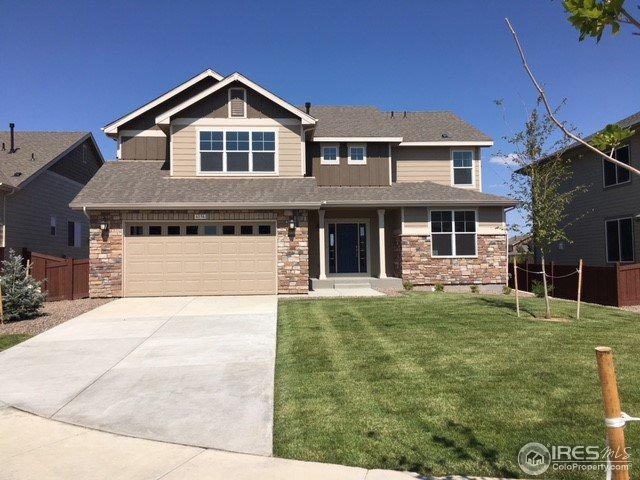 6136 Washakie Ct, Timnath, CO 80547 (#861664) :: The Peak Properties Group