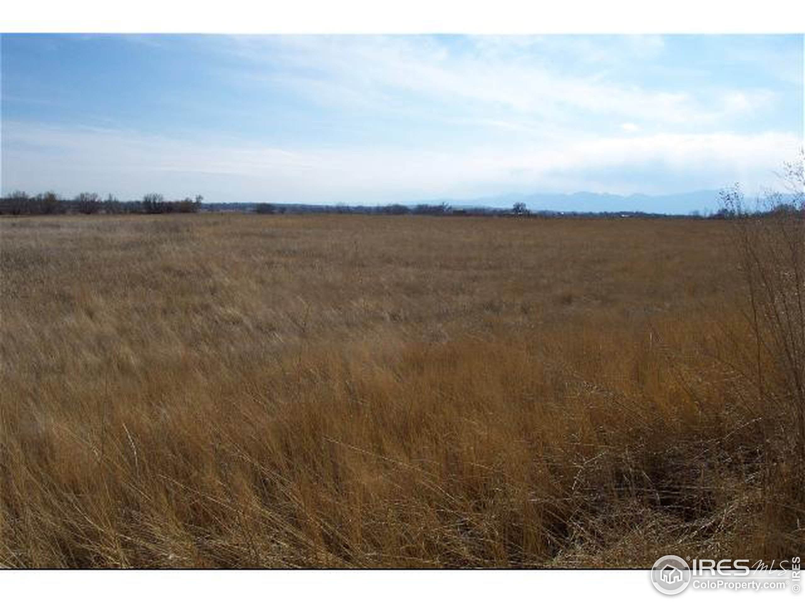 3110 N Franklin Ave, Loveland, CO 80538 (MLS #861948) :: 8z Real Estate